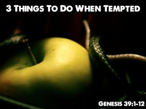 3 Things To Do When Tempted.001-001